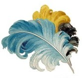 Feathers_01
